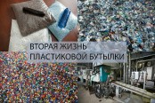 Бизнес план по переработке пластиковых бутылок