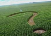 Каким бизнесом заняться с нуля в сельской местности?