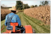 Как стать фермером с нуля субсидии от государства
