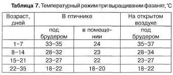 температурный режим выращивания фазанят